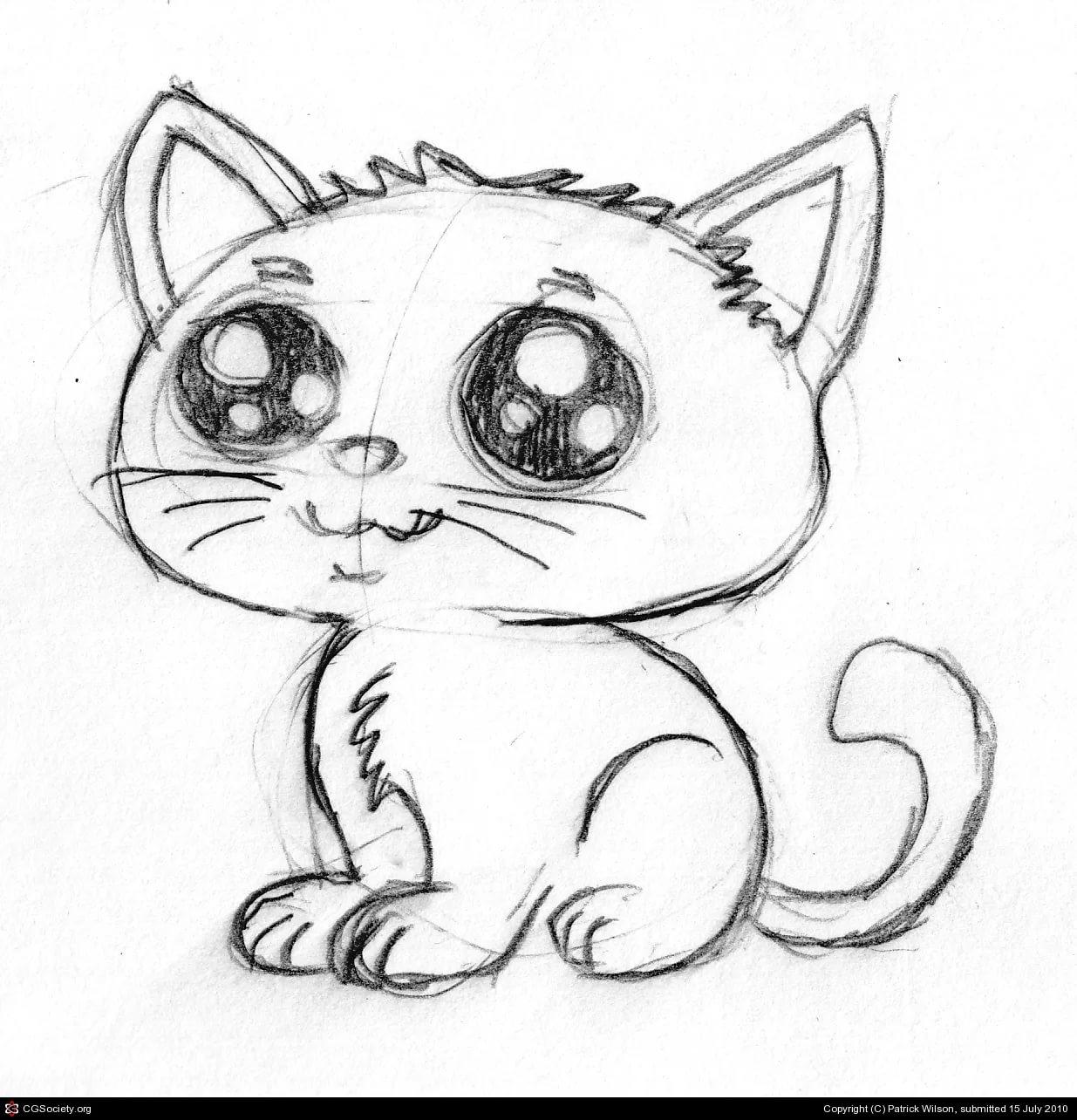 Карандашом милые рисунки котиков очень легкие 20