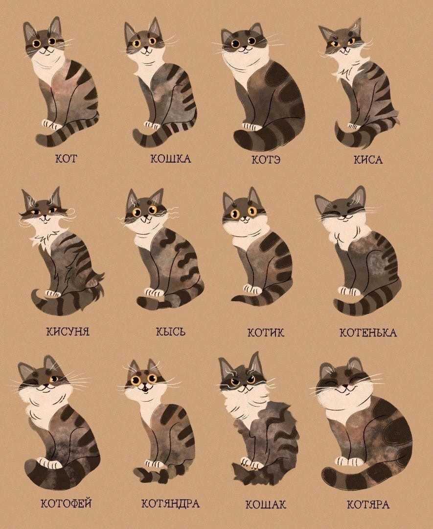 Картинки милые котики для рисования 13