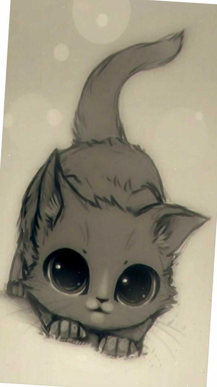 Картинки милые котики для рисования 20