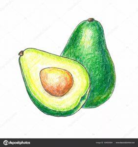 Красивый авокадо рисунок карандашом   коллекция 9