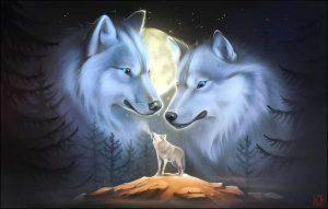 Красивый арт волка, картинки 16
