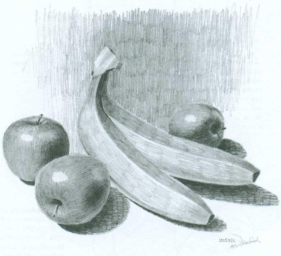 Красивый натюрморт рисунки фруктов 11
