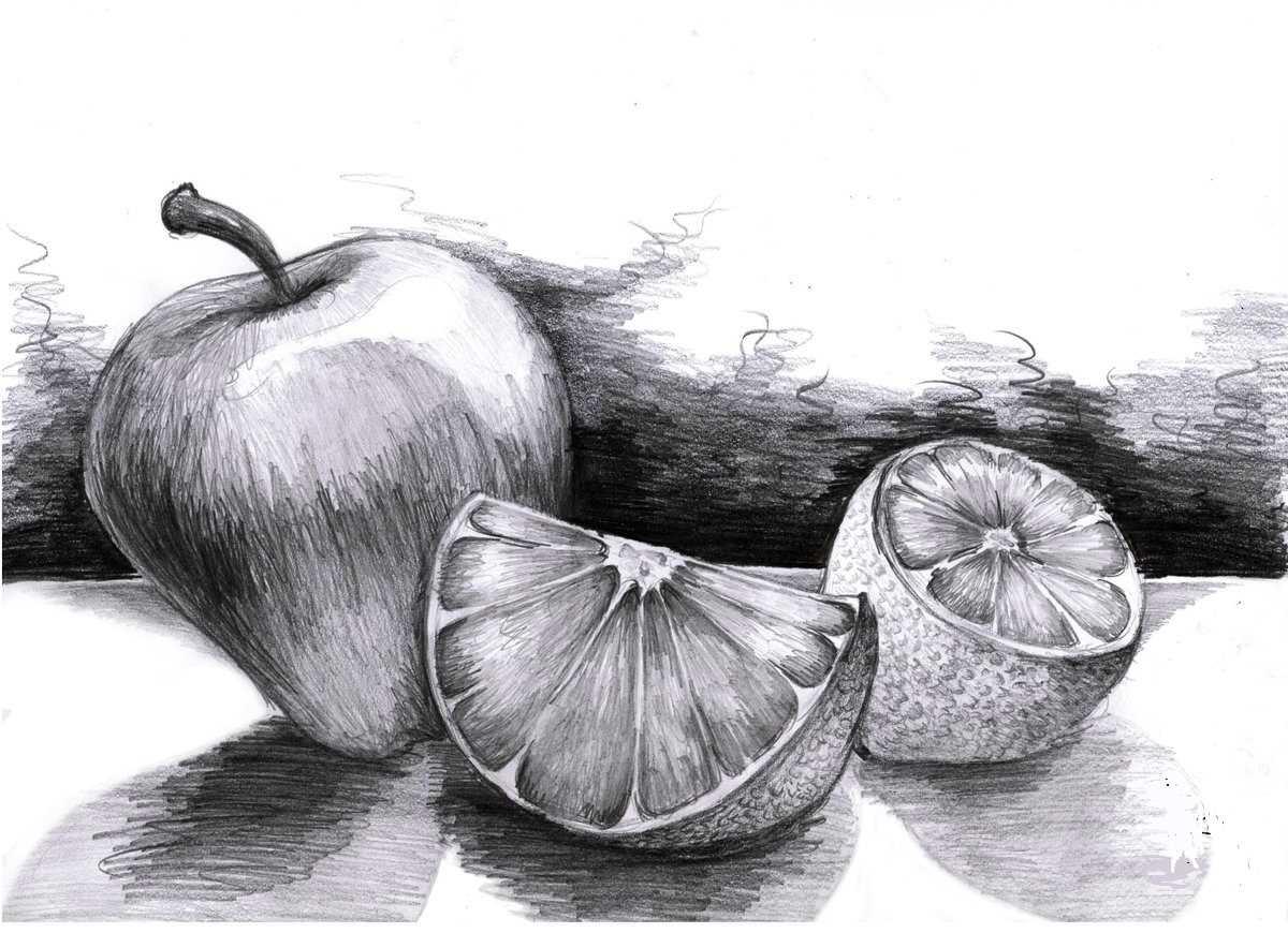 Красивый натюрморт рисунки фруктов 12