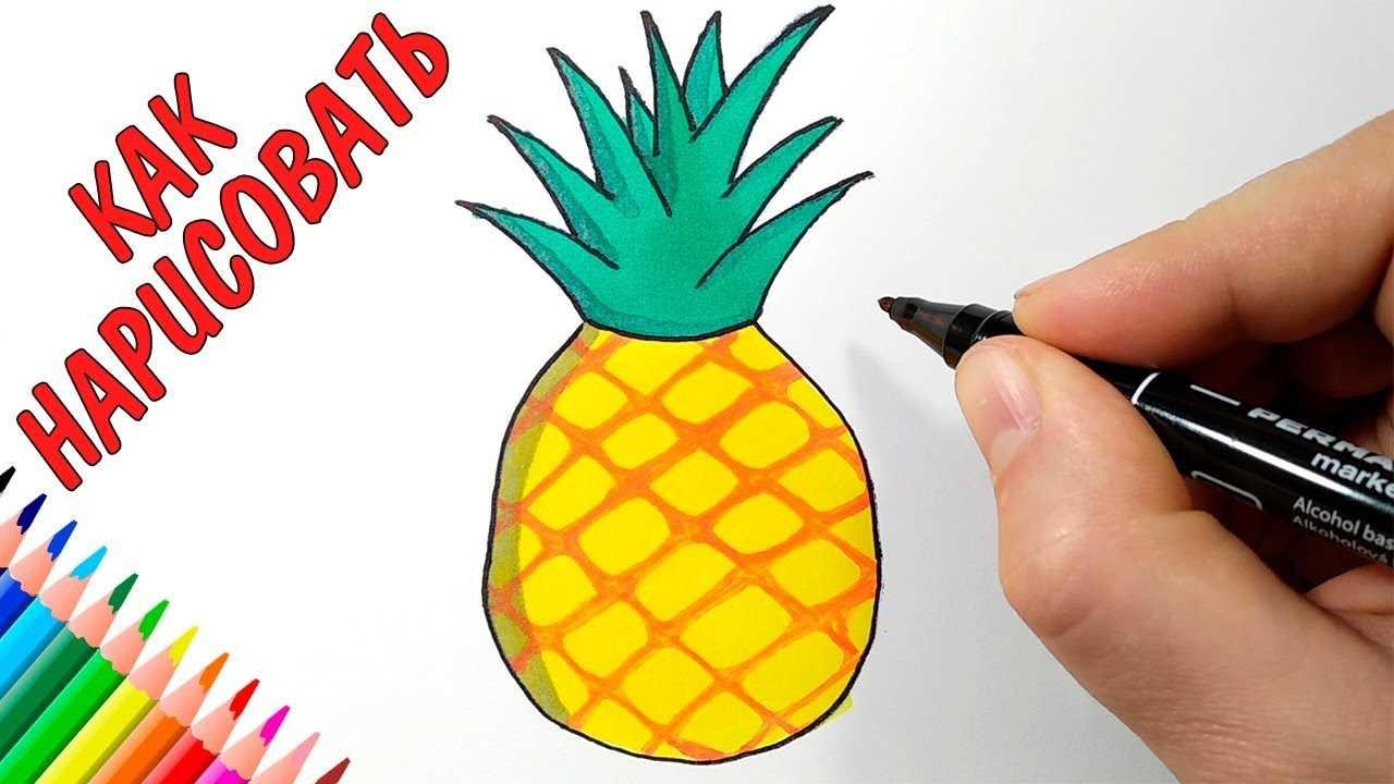 Лёгкие рисунки ананаса карандашом 01
