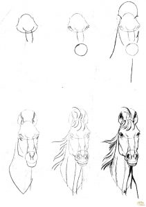 Простые рисунки головы для начинающих 15
