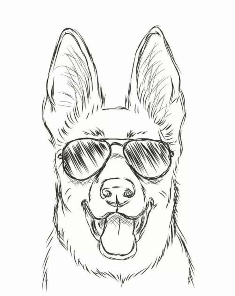Рисунки собак для срисовки, легкие картинки 01
