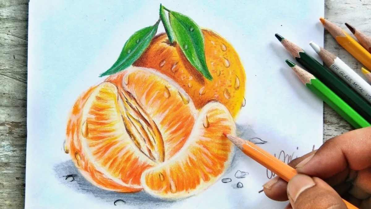 Рисунок Половинка апельсина для срисовки 07