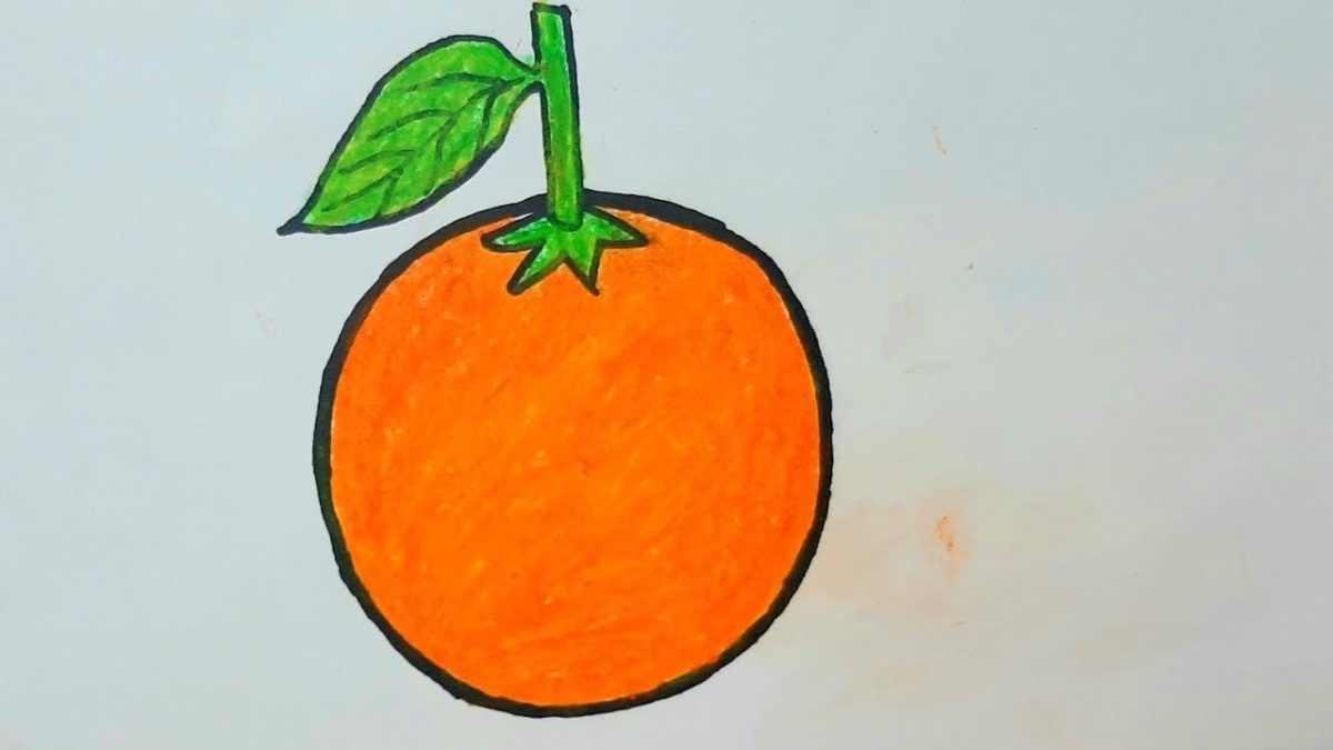 Рисунок Половинка апельсина для срисовки 09