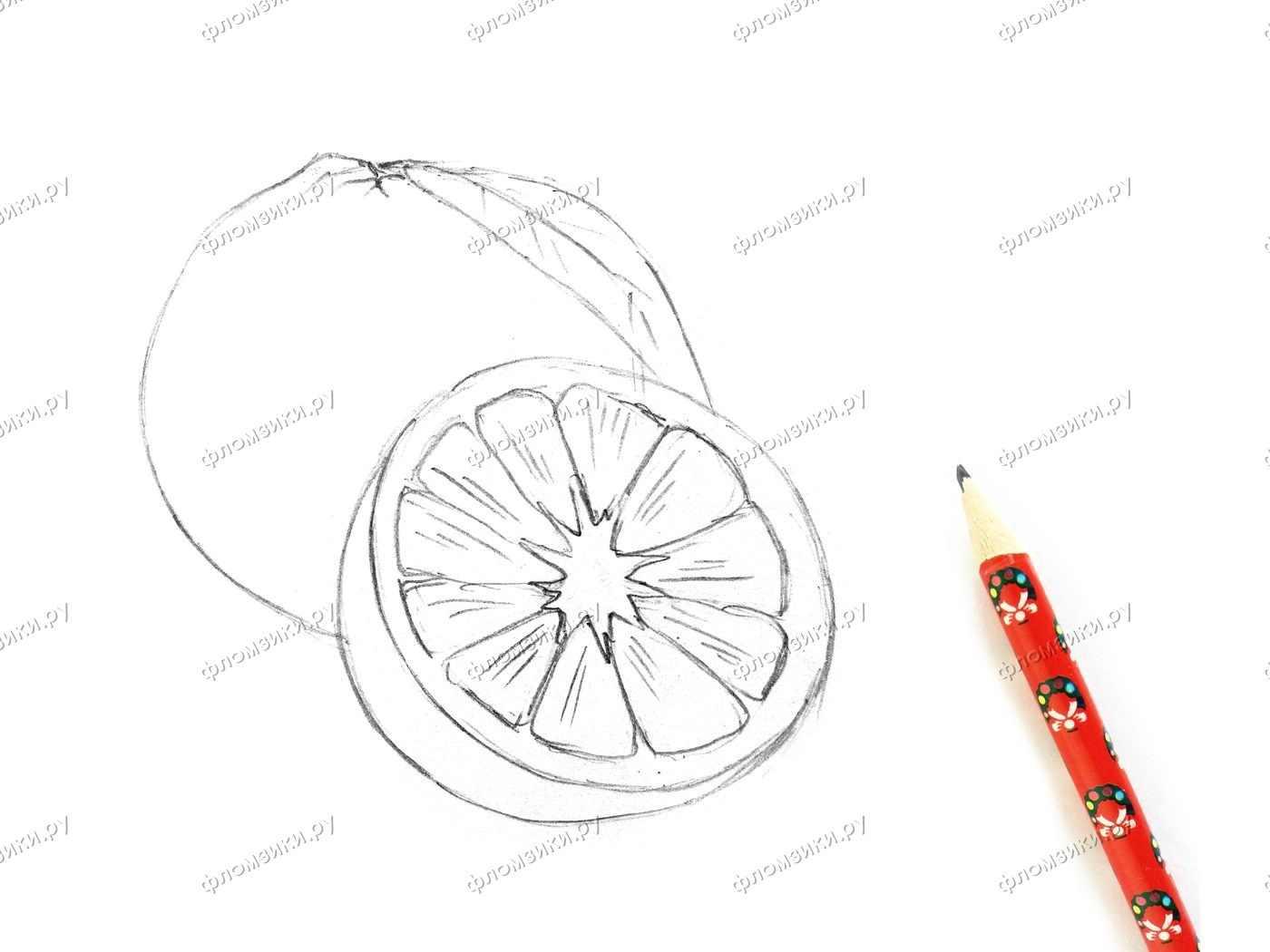 Рисунок Половинка апельсина для срисовки 11