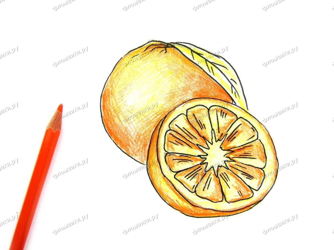 Рисунок Половинка апельсина для срисовки 16