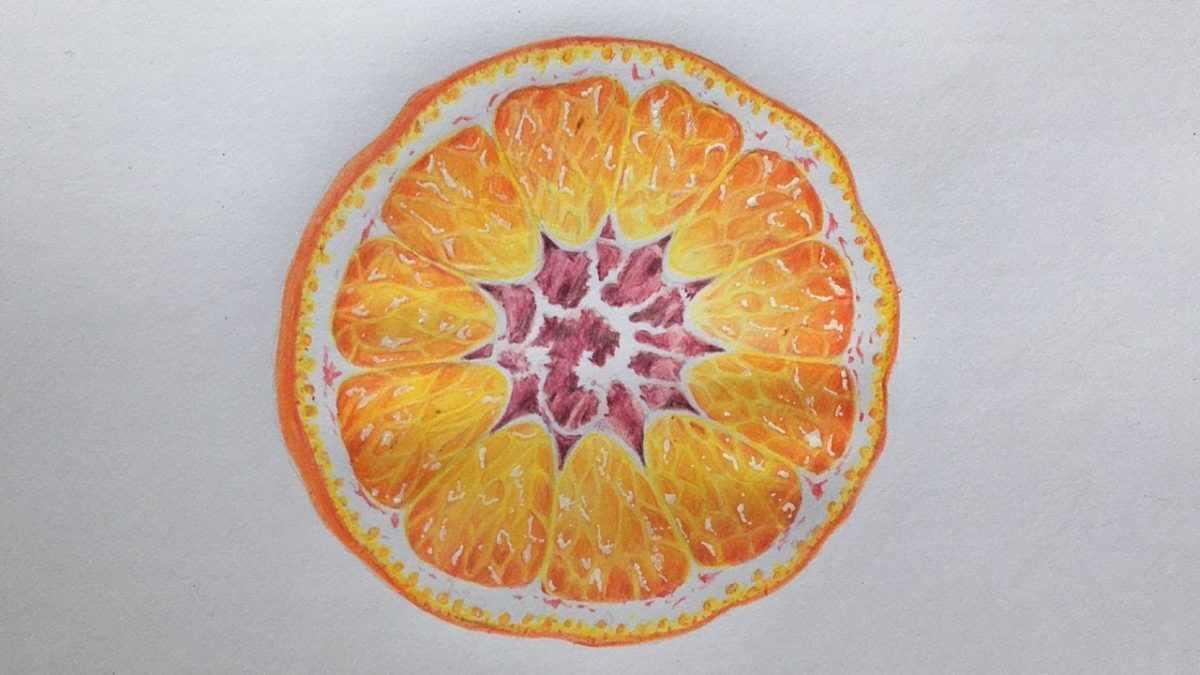 Рисунок Половинка апельсина для срисовки 17