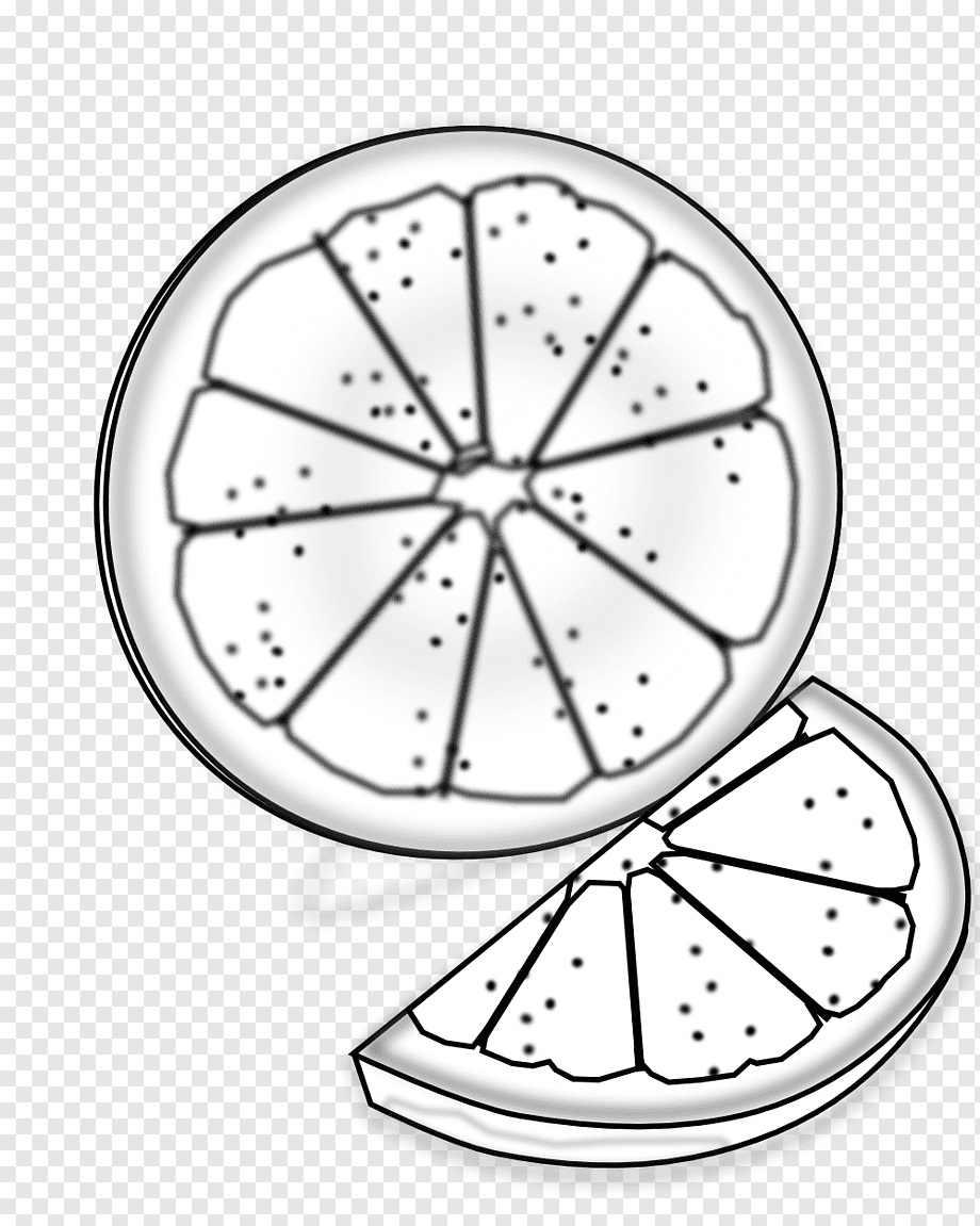 Рисунок Половинка апельсина для срисовки 18