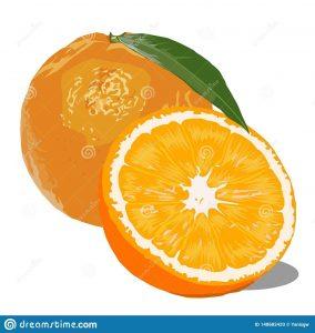 Рисунок Половинка апельсина для срисовки 20