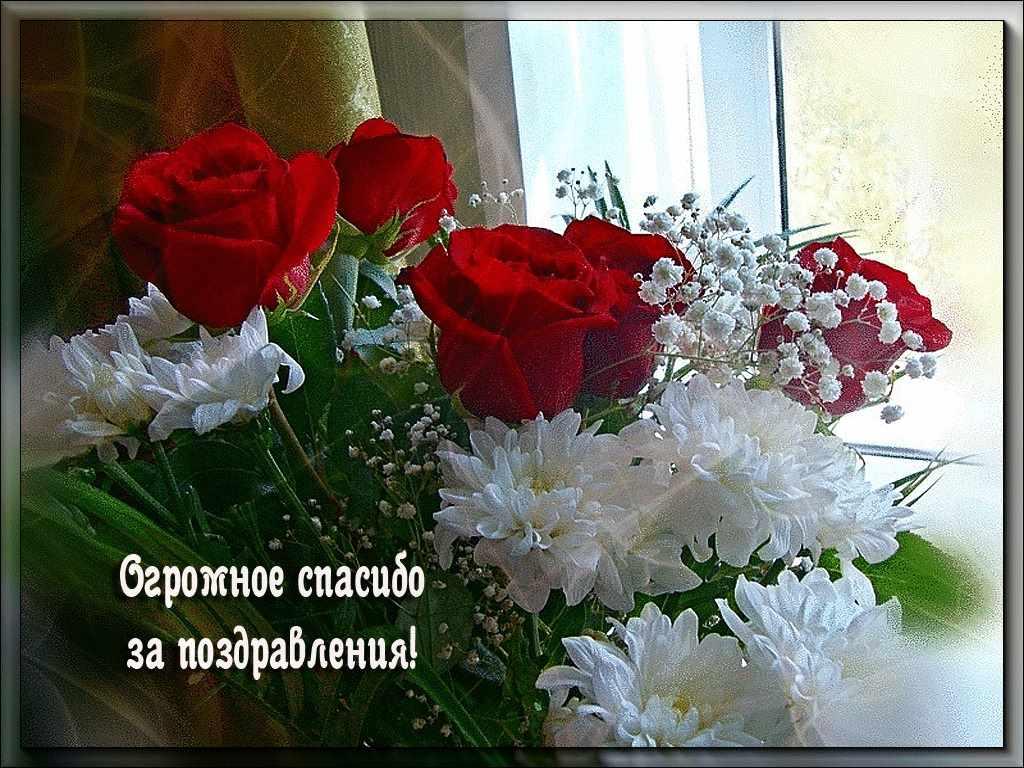 Скачать картинки спасибо за поздравления 09
