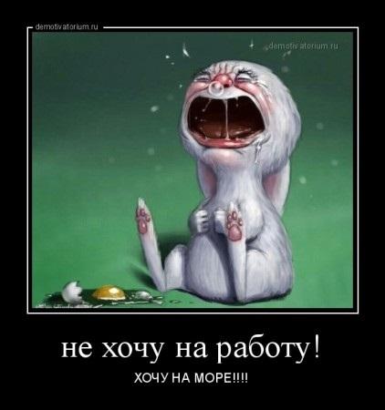 Картинки смешные Не хочу работать (4)