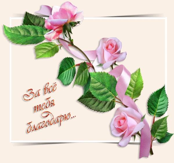 Красивые открытки благодарю и спасибо (2)