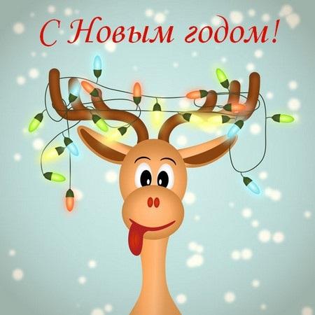 С новым годом веселые картинки и открытки (20)