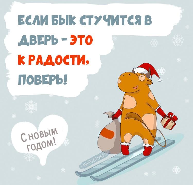 С новым годом веселые картинки и открытки (6)