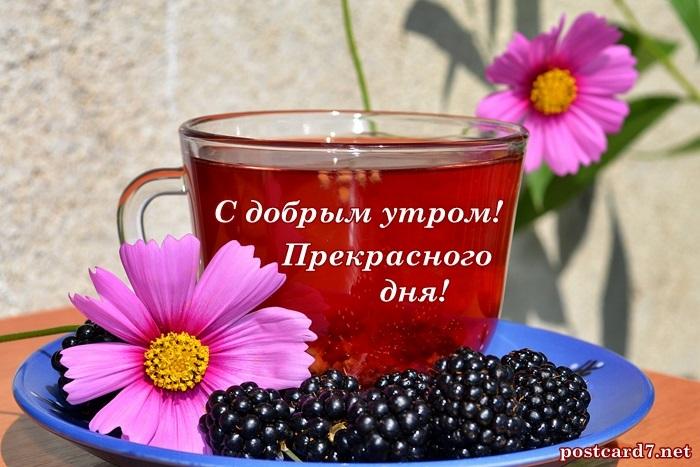 Новые фото   Чашка чая с Добрым утром за 2021 год (4)