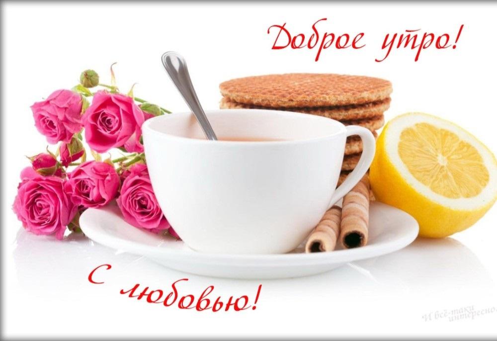 Новые фото   Чашка чая с Добрым утром за 2021 год (5)