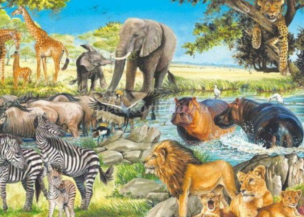 Интересные картинки для детей природа Африки (14)