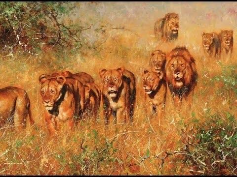 Интересные картинки для детей природа Африки (17)