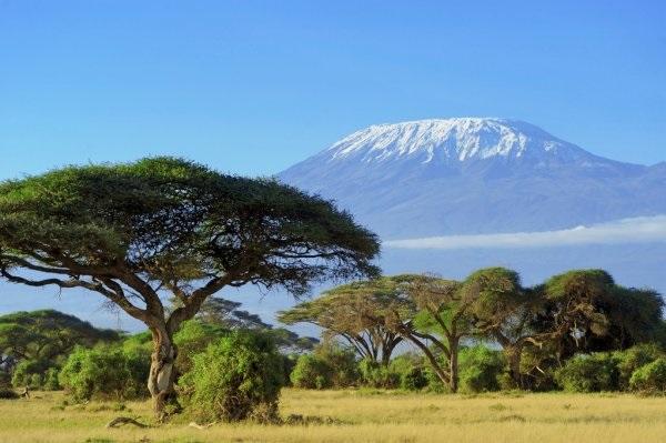 Интересные картинки для детей природа Африки (21)