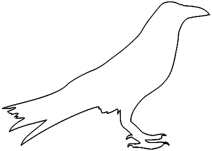 Картинки раскраска для детей Ворона (2)