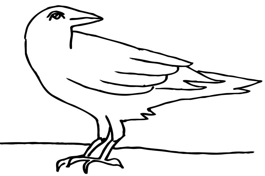 Картинки раскраска для детей Ворона (24)