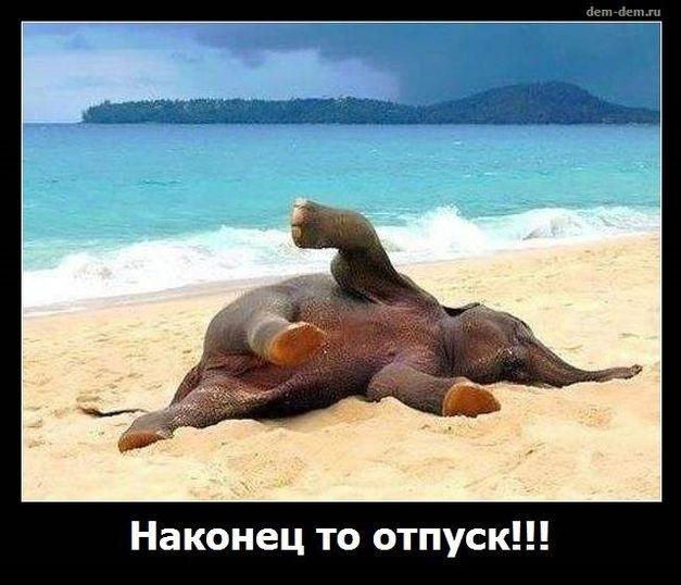 Картинки смешные в отпуске (18)