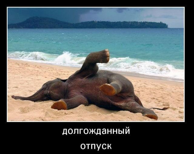 Картинки смешные в отпуске (24)
