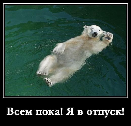 Картинки смешные в отпуске (3)