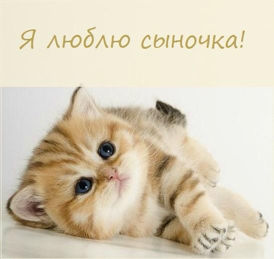 Лучшие картинки с надписями Мое счастье (7)