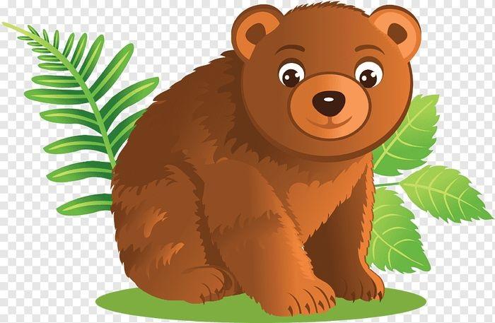 Медведь бурый картинка для детей (13)