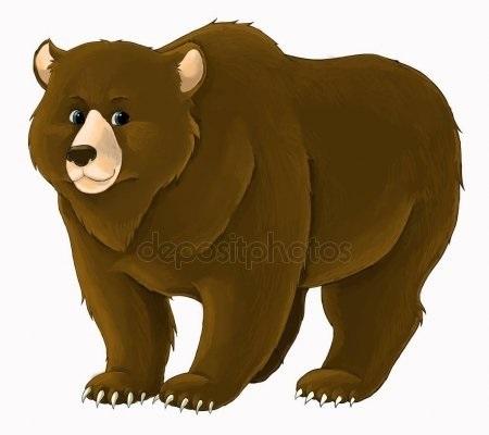 Медведь бурый картинка для детей (24)