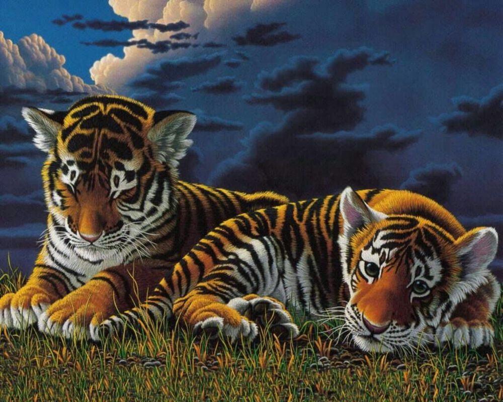 Тигрята на рабочий стол картинки (6)
