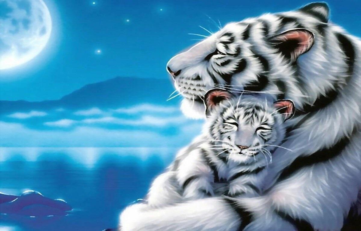 Тигрята на рабочий стол картинки (7)