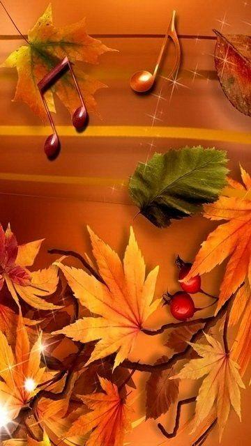 Картинки осень красивые для телефона за 2021 год (2)