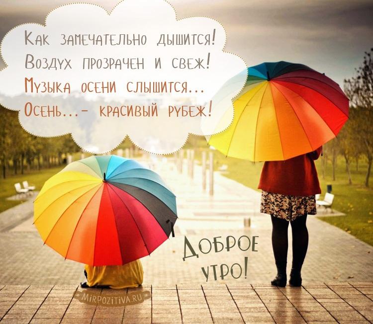 Замечательного утра и прекрасного настроения осенью и в дождь (7)
