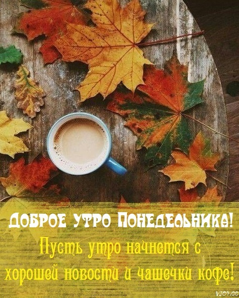 Замечательного утра и прекрасного настроения осенью и в дождь (8)
