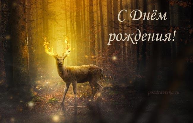 Красивые картинки охотнику с Днем Рождения (2)